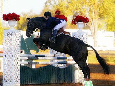 Morgan jumps on Horseback