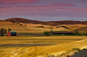 Palouse Havest by Laura Vu